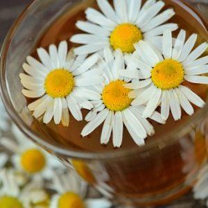 Herbal Tea- Tisane